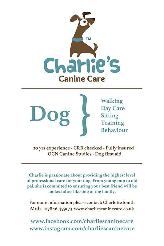 charlie smith, charlies canine care, dog walker solihull, dog walker birmingham, house sitter, dog sitter, dog trainer, idp