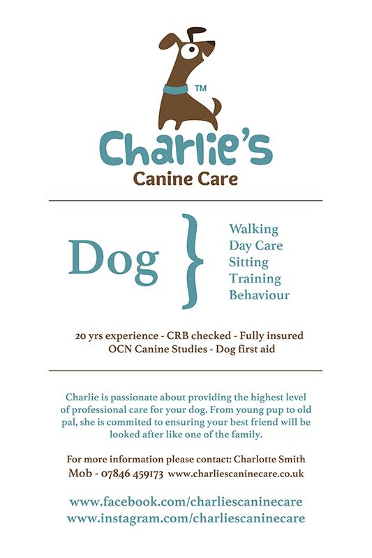 charlie smith, charlies canine care, dog walker solihull, dog walker birmingham, house sitter, dog sitter, dog trainer, idp